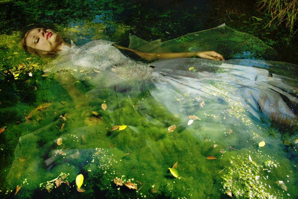 Take me to your dreams Ophelia IV